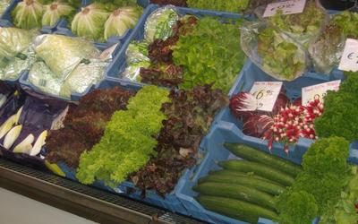 Fruitpaleis - Fruit & groenten